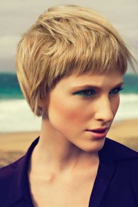 Short Hairstyle For Thick Hair