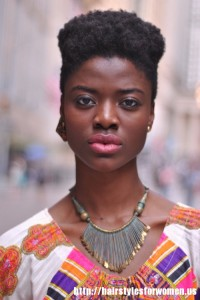 Short Natural Hairstyles Black Women
