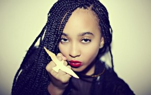 Box Braids Long Hairstyles