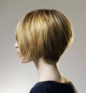 Hairstyles Inverted Bob