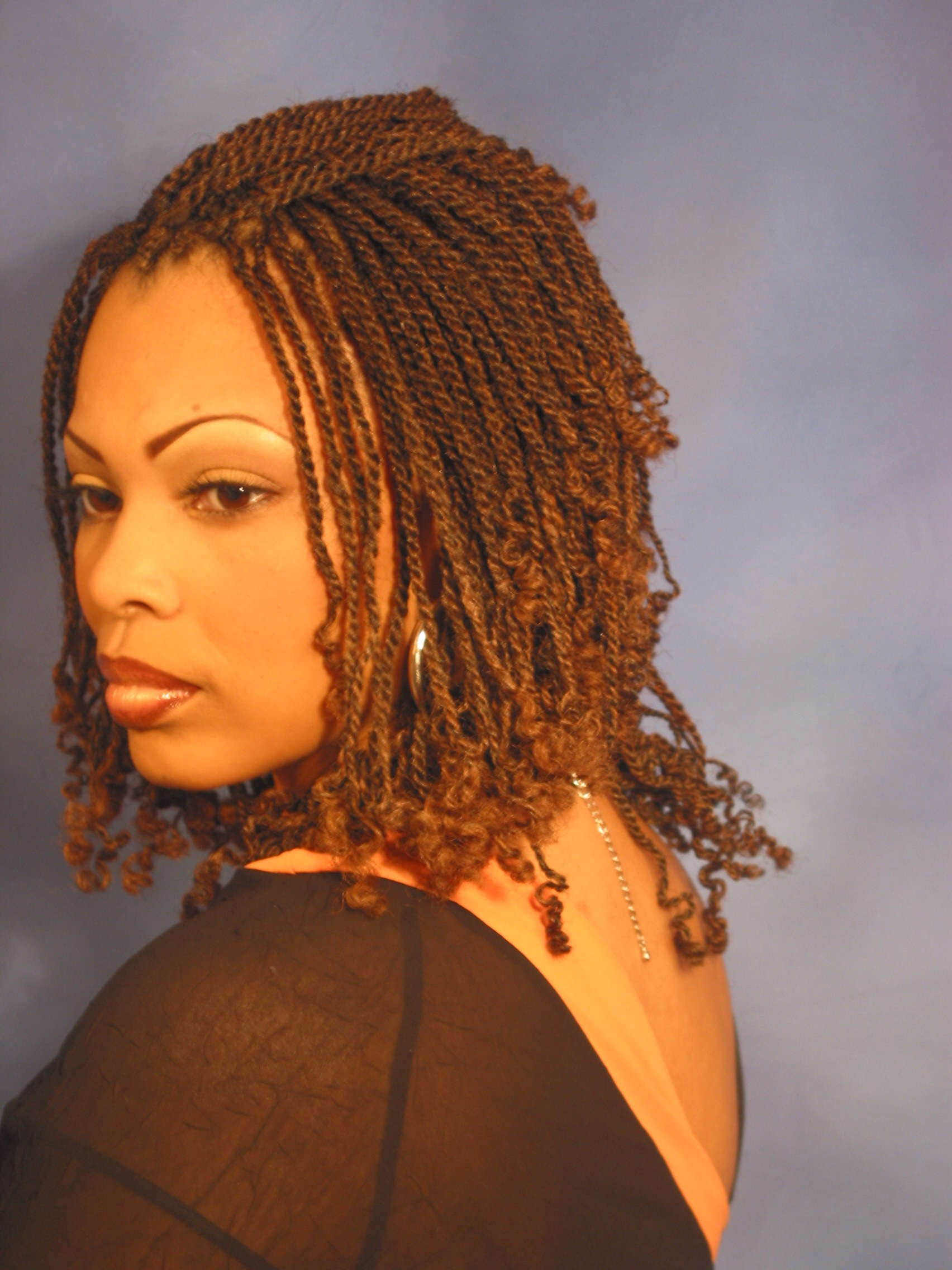 Short Kinky Twist Braid Hairstyles
