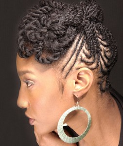 Natural Hairstyles Twists
