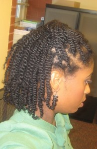 Natural Hairstyles Two Strand Twists