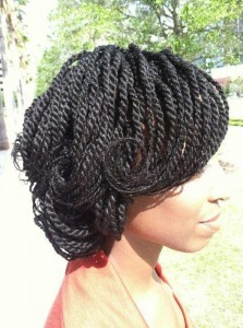 Two Strand Twist Natural Hairstyles