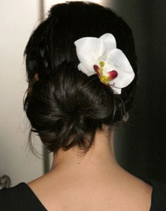 Pictures of Chignon Hairstyles